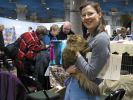 Saintly_City_Cat_Show_2006_014.jpg